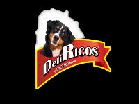 DeliRicos slide