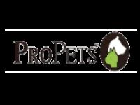 ProPets slide